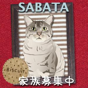 Sabatanamecard_m_2