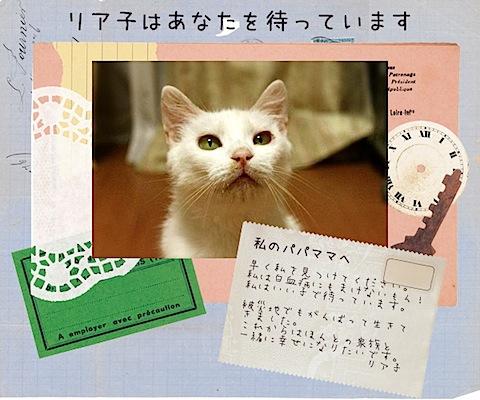 letterfromliaco.jpg