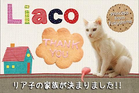 liaco_thankyou.jpg