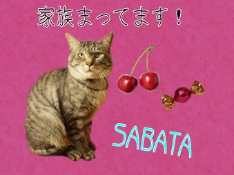Sabatian_poster