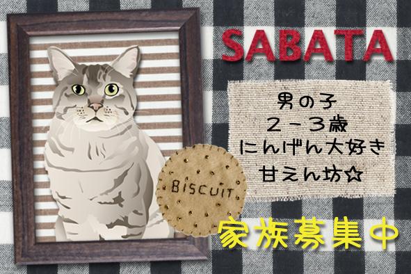 Sabatanamecard