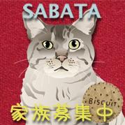 Sabatanamecard_s